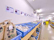 *ふくちジャックドセンター/福地の元気なお母さん達が丁重に管理育成した農産物。