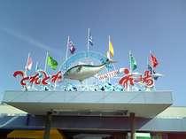 【観光・施設】新鮮な魚介類と南紀白浜ならではのお土産物が豊富にそろう「とれとれ市場」