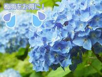 ★★キター!雨が降ったら・・・ワンちゃん無料・・・梅雨限定・天の恵みプラン★★