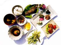 【5~6月限定】秋山郷の恵みを堪能する春~山菜~