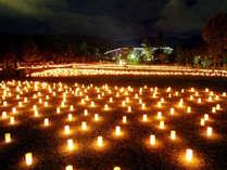 【奈良の夏】燈花会(とうかえ)プラン一客一燈