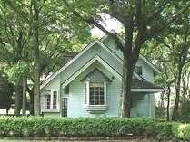 夏期はまるで森の中の一軒家の雰囲気
