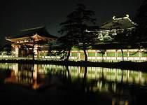 【ナイトツアー】東大寺大仏殿ライトアップまで送迎+ガイド付!無料の人気ツアーです♪