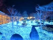 奈良瑠璃絵♪一面がライトアップされてまさに幻想的な世界へ★☆