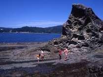 海底♪海洋♪上陸!見残し海岸♪ここでしか経験できない旅の思い出を。【選べる足摺アクティビティプラン】