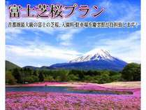【じゃらん限定】 4月~5月恒例 【富士芝桜プラン】 首都圏最大級の富士の芝桜 ポイント 特典付