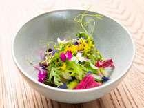 Da Terra×森羅塾コラボプランのディナーコースの一例(季節によって使われる食材や料理内容は異なります)