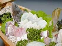 新鮮プリップリの地魚の舟盛り(一例)