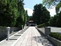 竜宮門に至る門前の参詣道。高野槙に濃い緑が美しい。