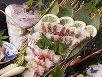 淡路島で味わう本場の鯛姿造り