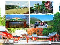 霧島六社権現巡り・登山・滝めぐり・グルメ♪などなど楽しさいっぱい