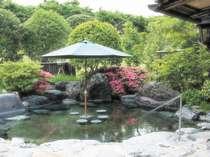 浜村・鹿野の格安ホテル 鹿野温泉国民宿舎山紫苑