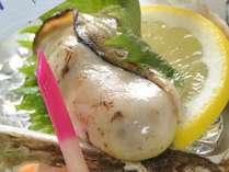 【期間限定】さわやかな甘みと濃厚な味わい♪岩牡蠣付宿泊プラン