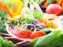 サラダ好きの方も、普段食べない方も!新鮮なお野菜で健康に♪