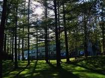 森に囲まれたホテル
