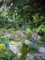 バラと季節の花 貸別荘 野わけ