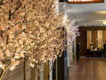 【季節のロビー装飾でお出迎え】(3~4月) ロビーに桜が咲きました。