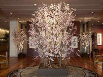 【季節のロビー装飾でお出迎え】(3~4月) 桜オブジェ