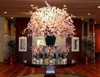 【季節のロビー装飾でお出迎え】(3~4月)桜