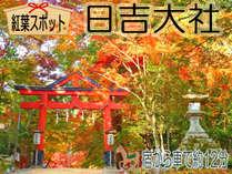 ≪紅葉×おごと温泉×四季会席≫で秋を満喫!!滋賀県屈指の紅葉名所『日吉大社』☆宿から車で約12分♪