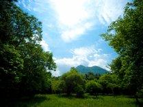 由布岳を一望できる貸し別荘♪大自然に囲まれて癒しのひと時をお過ごしいただけます♪