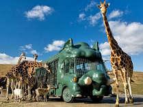 【アフリカンサファリ】大自然のなかで動物たちと大はしゃぎ!家族みんなで楽しめます