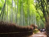 【竹林の小径】徒歩約17分/京都を代表する美しい散策路。写真撮影は人が少ない早朝がおすすめ。
