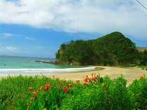 初夏の入田浜、もうすぐたっくさんの人で賑わいます。