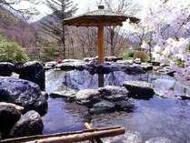露天風呂瑠璃の湯の春。花のシーズンには山桜のお花見も楽しめます♪