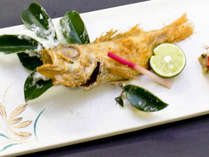 <12月~3月>幻の高級魚!のどぐろの塩焼き