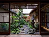 和室から坪庭の眺め