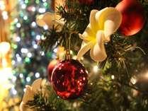 【1日10組限定】クリスマススペシャルディナー付/大切な人と過ごすロマンティックなリゾートクリスマス