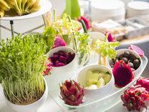 潮風の朝食/色鮮やかな果肉が目を惹くドラゴンフルーツやライチ、メロンなどをご用意。