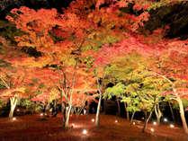 【11月は長瀞紅葉まつり♪】徒歩15分・月の石もみじ公園は夜間ライトアップ送迎プランございます!