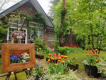 5月のお庭はチューリップがいっぱい♪