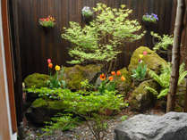 新緑とチューリップが咲く季節の貸切露天風呂のお庭