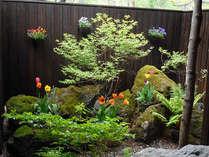 新緑とチューリップが咲く季節の貸切露天風呂のお庭♪夜にはライトアップも出来ます。