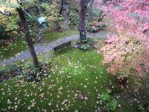 テラス露天風呂付客室のテラスから紅葉の秋を満喫♪