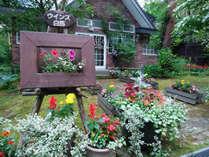 玄関前のお庭はお花がいっぱい♪