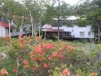 6月ツツジの頃の高原荘