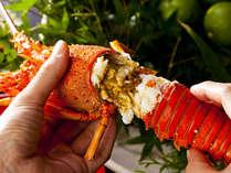 伊勢海老の丸ごと焼きは誰もが喜ぶ、定番人気のお料理。豪快にかぶりついてみませんか?