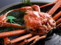 タグ付きブランド蟹は「茹で」がオススメ♪/例