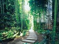 【別館1階】竹の道 神谷町駅方面から別館ロビーへ