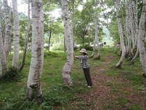 森林セラピー4