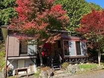 秋のD棟外観。サンルームから眺める紅葉は贅沢です。