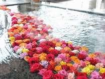 ☆湖上露天風呂☆ 【夕陽:お昼】沢山の色があるバラに囲まれてみてはいかがですか?