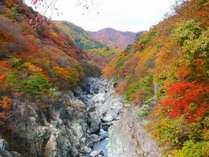 ホテルから車で10分の「龍王峡(りゅうおうきょう)」紅葉の見ごろは11月上旬~中旬