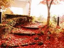 秋色に染まる、雰囲気抜群のホテルのお庭