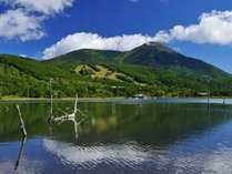 標高1,530mの女神湖周辺は緑溢れる環境