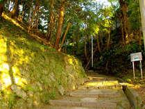 【拝観券付き】新緑の笠置寺を訪れる◇ハイキングで森林浴♪